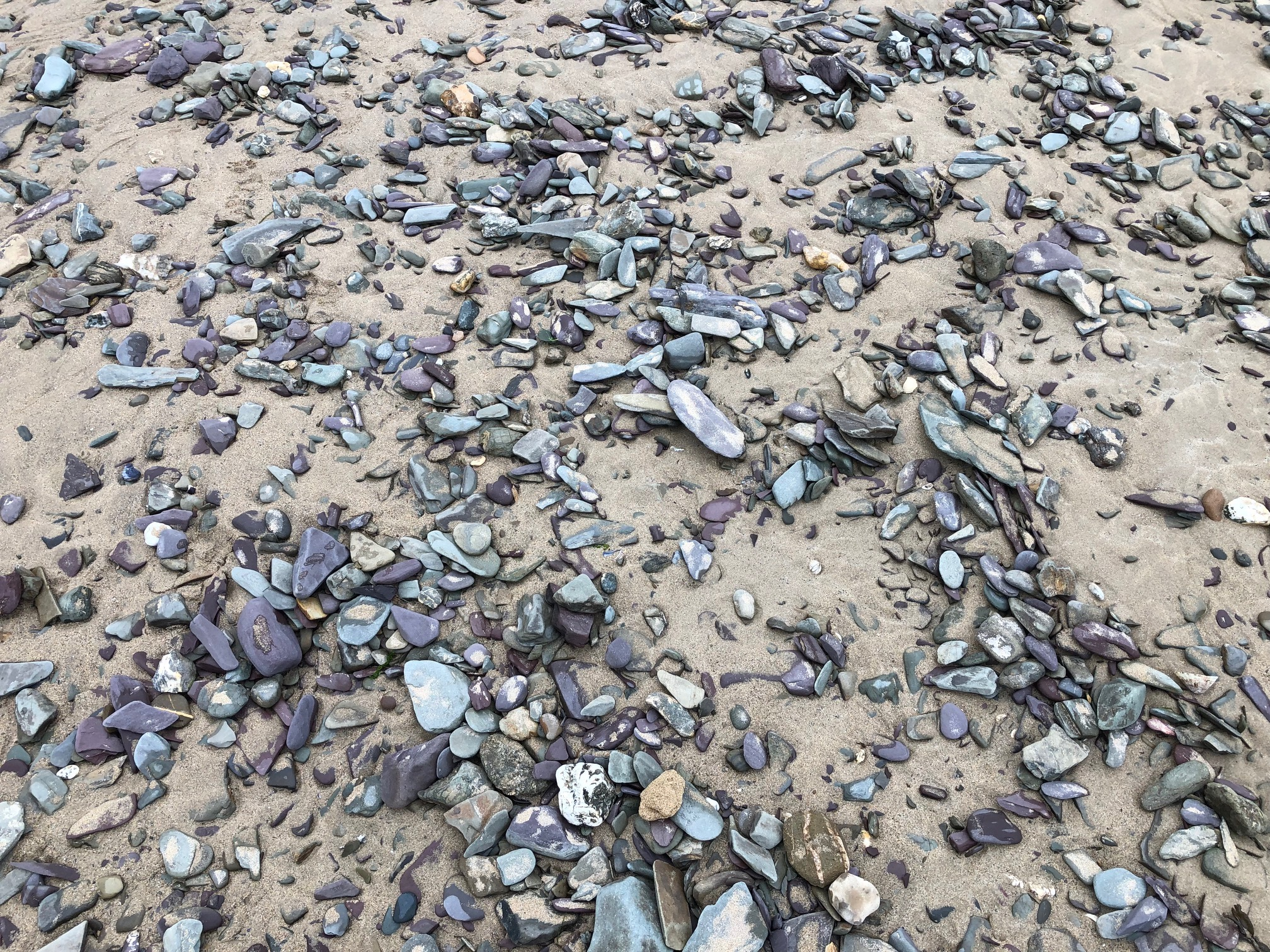 Blue and purple stones on a beach
